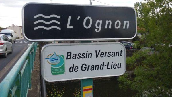 Construire à Pont-Saint-Martin -  L'Ognon, rivière du Bassin Versant de Grand-Lieu